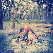 Tim Hester - Campfire In Forest Instagram Style