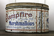 Campfire Marshmallows Tin Print by Lynn Palmer