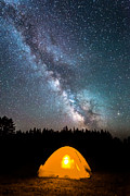Nikon D800 Originals - Camping Under The Stars by Michael Ver Sprill