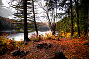 Cary Metal Prints - Campsite on Cary Lake Metal Print by David Patterson