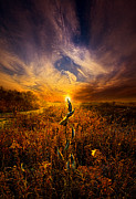 Phil Koch - Can I Stay With You...