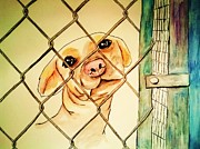 Cage Paintings - Can you take me home by Esther Rowden