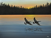 Flight Originals - Canada Geese by Kenneth M  Kirsch