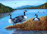Canadian Geese Paintings - Canada Geese - Lake Lure by Fran Brooks