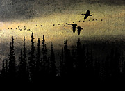 Winter Scene Pastels - Canada Geese Seeking the Light by R Kyllo