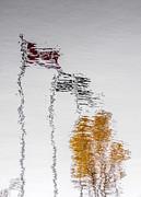 Arkady Kunysz - Canada - Quebec - Autumn