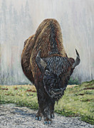 Marilyn  McNish - Canadian Bison