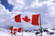Whistler Photos - Canadian Flags At Whistler by Charline Xia