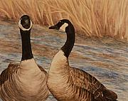 Canadian Geese Paintings - Canadian Geese by Michelle Miron