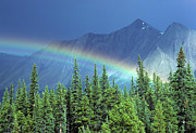 Travel Alberta Prints - Canadian Rocky Mountains Rainbow Print by Bob Christopher