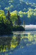 Mirceax Prints - Canadian Summer Morning Print by Mircea Costina Photography