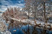 Snow Framed Prints - Canal of Reflection Framed Print by Cat Connor