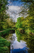 Co Canal Framed Prints - Canal towpath walk Framed Print by Martina Fagan