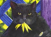 Wicked Kitty Metal Prints - Canary Metal Print by Catherine G McElroy