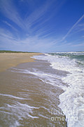 Atlantic Beaches Posters - Canaveral National Seashore Poster by Millard H. Sharp