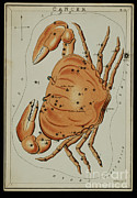 Science Source - Cancer Constellation Zodiac Sign 1825