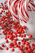 Cane Posters - Candy Canes and Red Berries Poster by Garry Gay