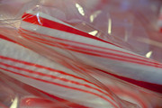 Sue Oconnor Metal Prints - Candy Canes Metal Print by Sue OConnor