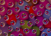 Brendan Quinn Metal Prints - Candy Drops Metal Print by Brendan Quinn