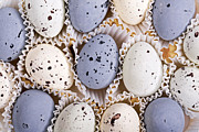 Holiday Art - Candy eggs by Jane Rix