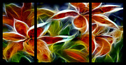 Luminous Digital Art - Candy Lily Fractal Triptych by Peter Piatt