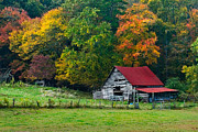 Autumn Farm Scenes Posters - Candy Mountain Poster by Debra and Dave Vanderlaan