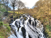 Pictures Photo Originals - Candy Waterfall by Rob Guiver
