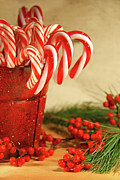 Candycanes With Berries And Pine Print by Sandra Cunningham