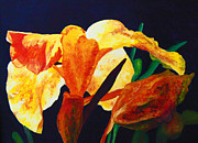 Canna Painting Framed Prints - Canna Glow Framed Print by Margaret Saheed