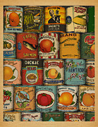 Cans Mixed Media - Canned by Meg Shearer