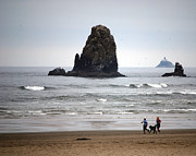 Seimagesonline Prints - Cannon Beach Run Print by Sharon Elliott