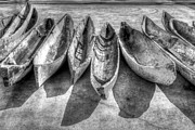Indian River Fl Photos - Canoes in Black and White by Debra and Dave Vanderlaan