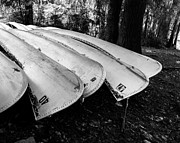 Canoes Art - Canoes on Caddo in Black and White by Sonja Quintero