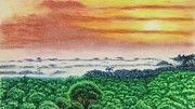 Amazing Pastels Prints - Canopy Sunset Print by Brent  Mileham