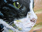 Susan Jones - Cantrell Kitty II