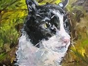 Susan E Jones - Cantrell Kitty