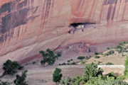 Native American Dwellings Prints - Canyon de Chelly Junction Ruins Print by Christine Till