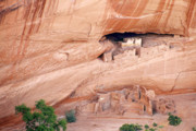 Navaho Posters - Canyon de Chelly White House Ruins Poster by Christine Till