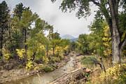 James BO  Insogna - Canyon Gazing