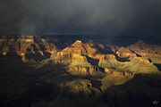 Grand Canyon Photos - Canyon Light by Peter Coskun