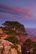 South Rim Prints - Canyon Morning Print by Andrew Soundarajan