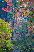 Oak Creek Photo Originals - Canyon Trail by Brian Lambert