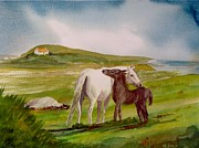 Connemara Paintings - Capaillini Chonamara Carna by Maureen Dowd