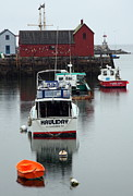 Fishingboat Posters - Cape Ann Red Fishing Shack Poster by Christiane Schulze