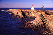 Joe Klune Metal Prints - Cape Arrago lighthouse Metal Print by Joe Klune