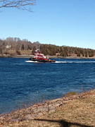 Featured Tapestries - Textiles Framed Prints - Cape Cod Canal Tugboat Framed Print by Lisa  Marie Germaine