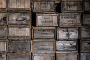Cranberry Prints - Cape Cod Cranberry Crates Print by Andrew Pacheco