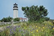 Cape Cod Paintings - Cape Cod Lighthouse by John Haldane