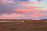 Sandwich Art - Cape Cod Marsh Autumn Sunset by John Burk