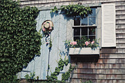 Boxes Paintings - Cape Cod Welcome by OMalley Keyes